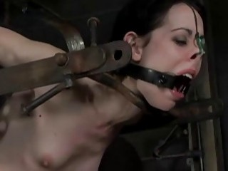 Caged sub slut Arachnia Webb toyed by the master BDSM