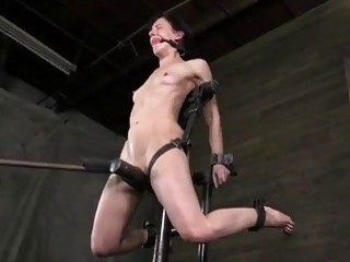 Restrained bitch Elise Graves screams while in pain BDSM porn