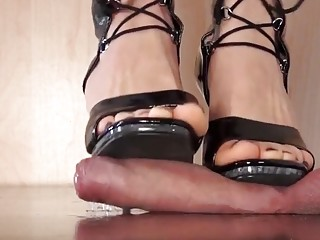 Stepping on a cock and torturing it without any mercy